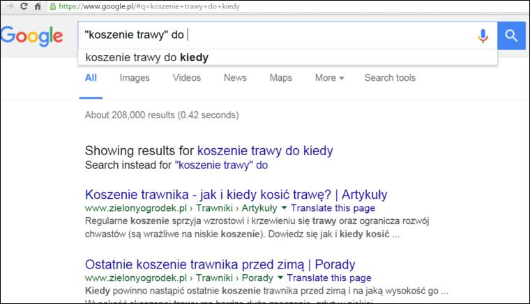 Podpowiedz Google znak cudzyslow - Jak zoptymalizowac wpis na blogu pod pozycjonowanie - Poradnik