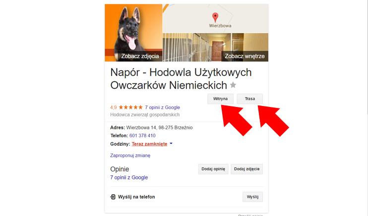 Wizytówka Google Moja Firma - Witryna, trasa