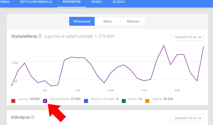 Wizytówka Google Moja Firma - Wyszukiwarka