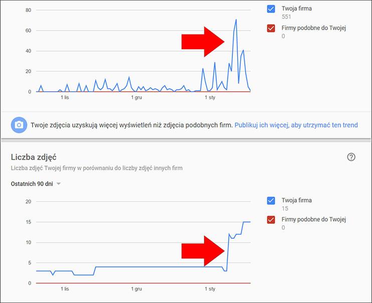 Statystyki fotografii wizytówki Google