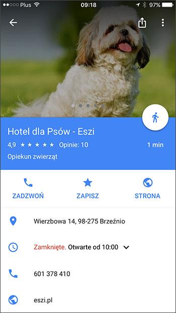 Zdjęcie profilowe w Mapach Google - iOS