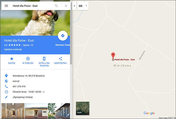 Zdjęcie profilowe - Mapy Google