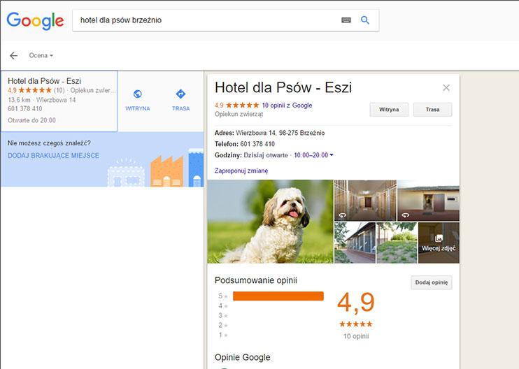 Zdjęcie profilowe - wyniki lokalne w Mapach Google
