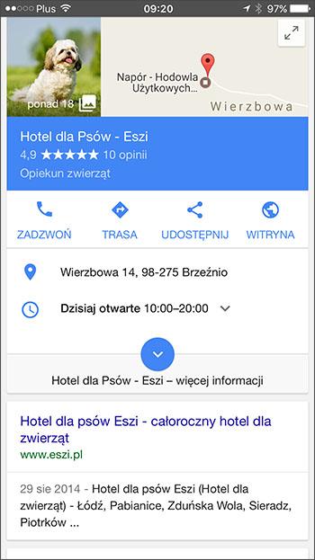 Zdjęcie profilowe wizytówki Google - Safari, iOS