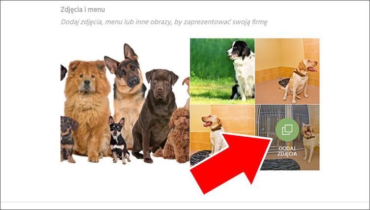 Dodawanie zdjęć - kreator www Google