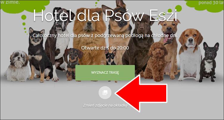 Kreator strony www Google Moja Firma