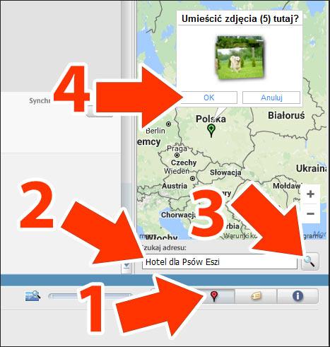 Odnajdywanie firmy na mapie w Picasa 3