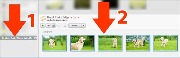 Otwieranie zdjęć w Picasa 3