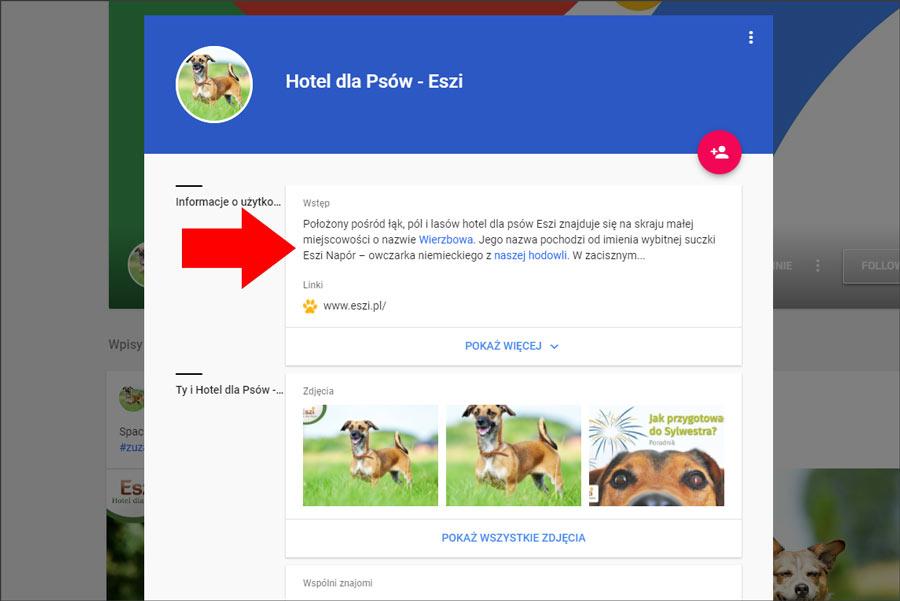 Opis firmy w Google+