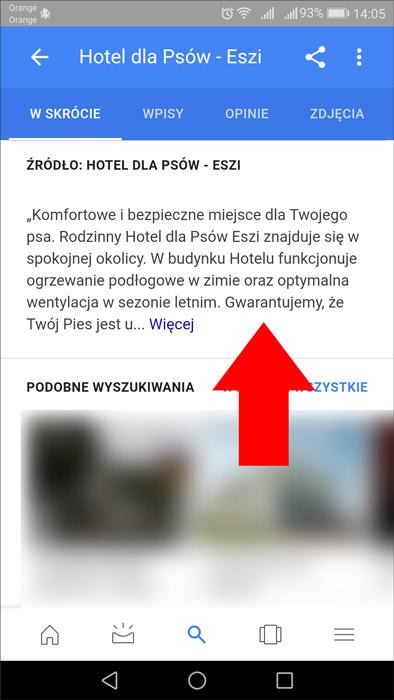 Zrzut ekranowy wizytówki Google z opisem firmy w wersji mobilnej